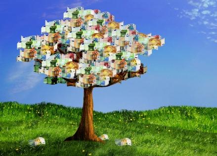 Wenn Geld auf Bäumen wüchse ...; Photo: Denise via Pixelio.de